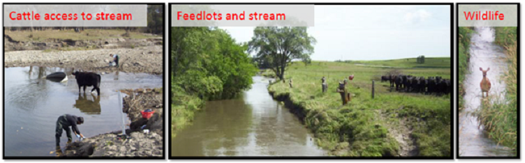 In-stream E. coli monitoring and modeling